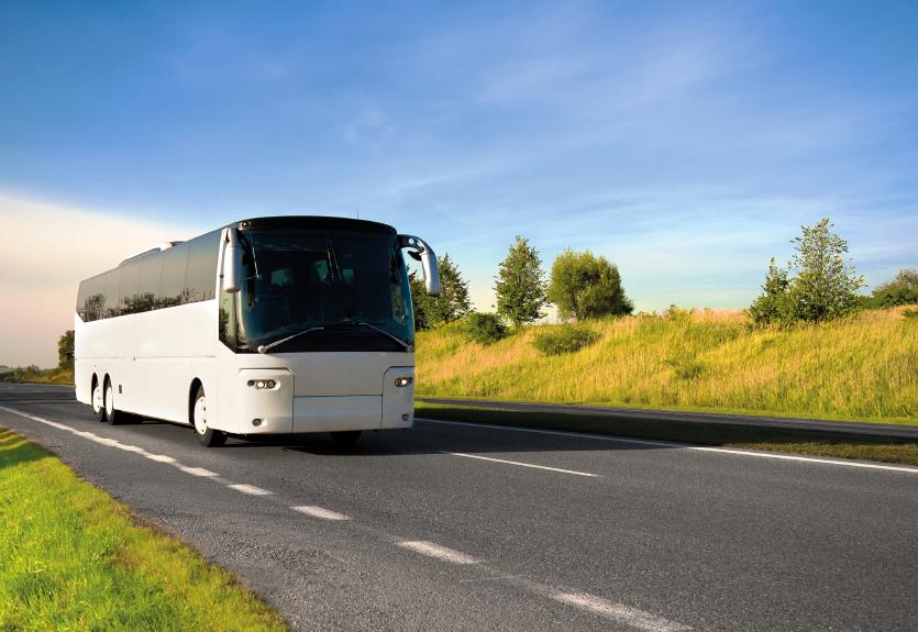 Kelioninio transporto nuoma ir pasiruošimas kelionei
