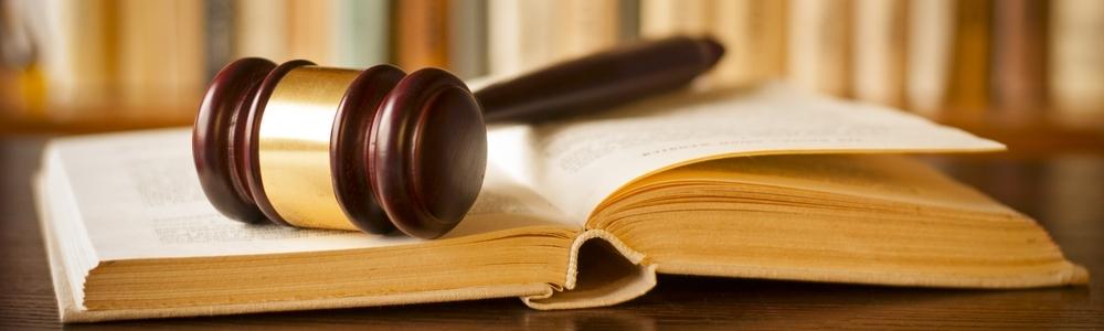 Profesionalios teisininkų paslaugos