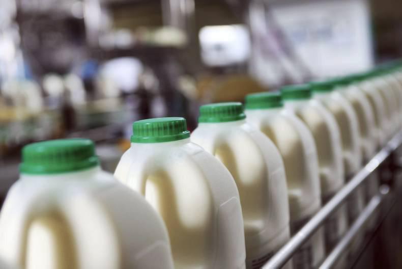 Pieno produktų gamybos verslas
